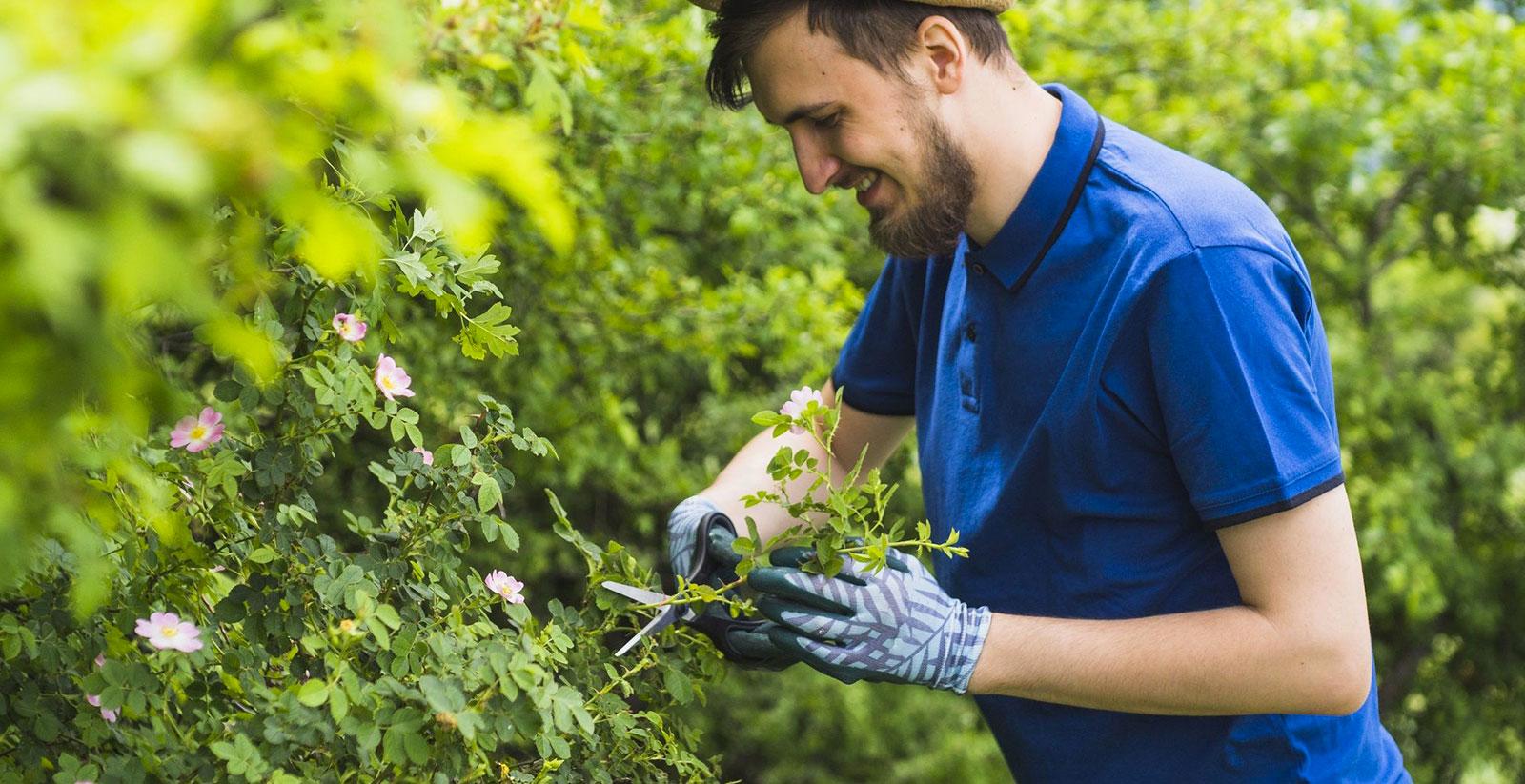 Trouver Un Jardinier A Domicile devenir aide à domicile : les métiers existants et