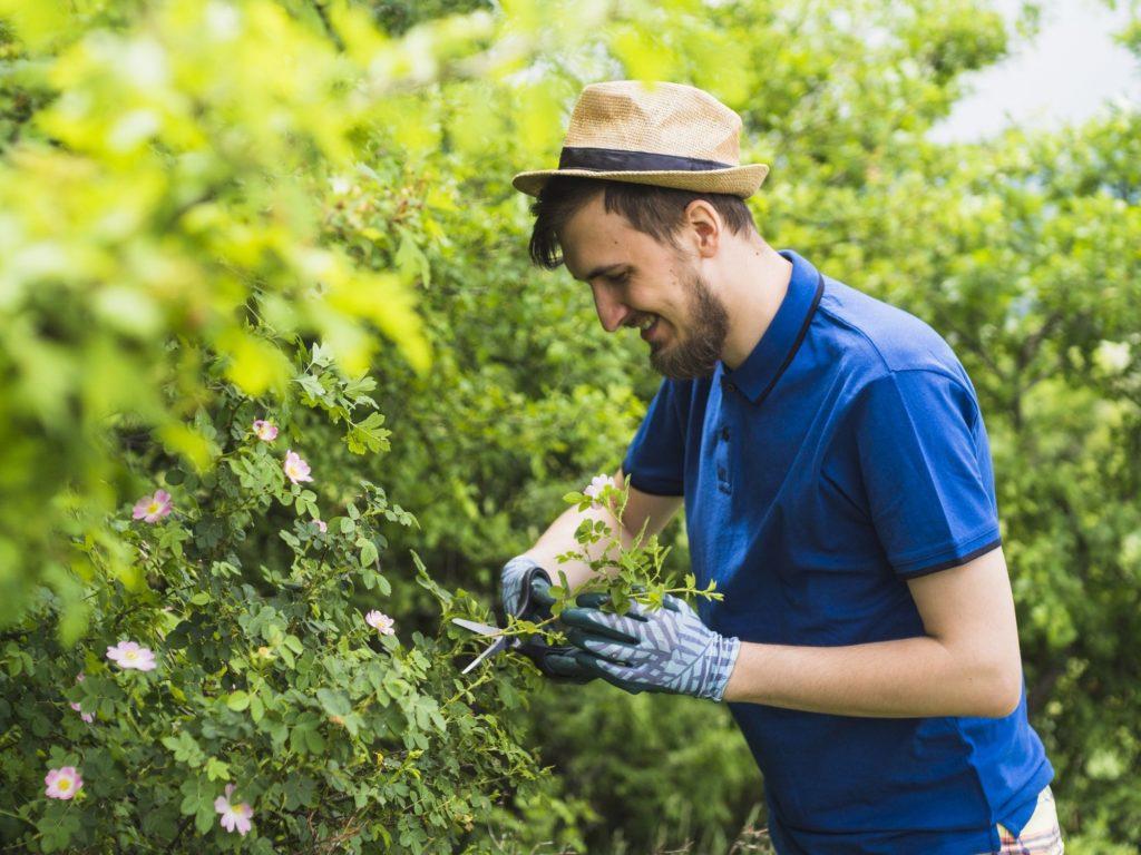 Comment devenir jardinier ? Fiche de poste, diplômes et ...